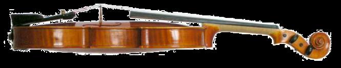 Violin_VL100 lateral